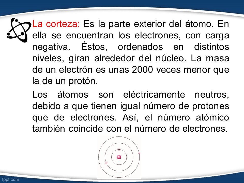La corteza: Es la parte exterior del átomo. En ella se encuentran los electrones, con carga negativa. Éstos, ordenados en distintos niveles, giran alr