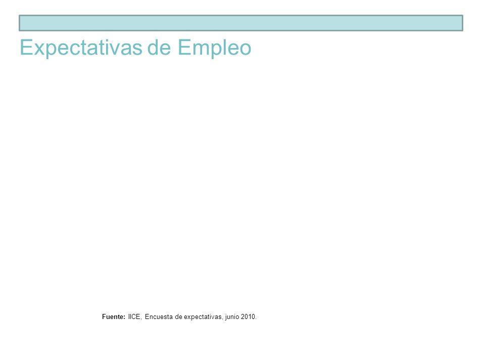 Fuente: IICE, Encuesta de expectativas, junio 2010. Expectativas de Empleo