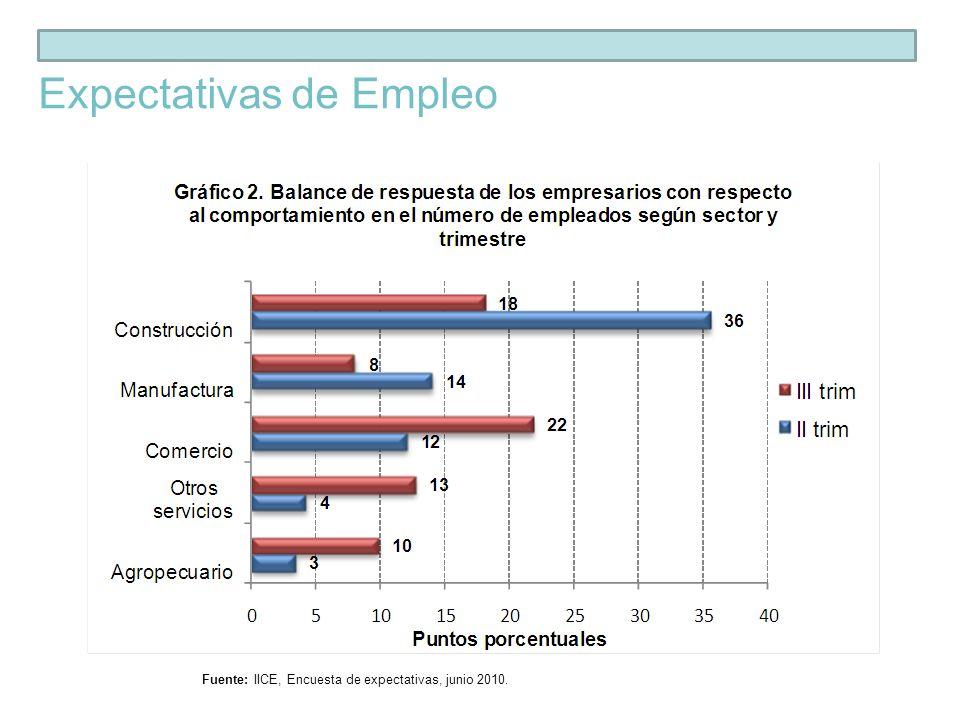 Fuente: IICE, Encuesta de expectativas, junio 2010. Expectativas de Ventas o Producción