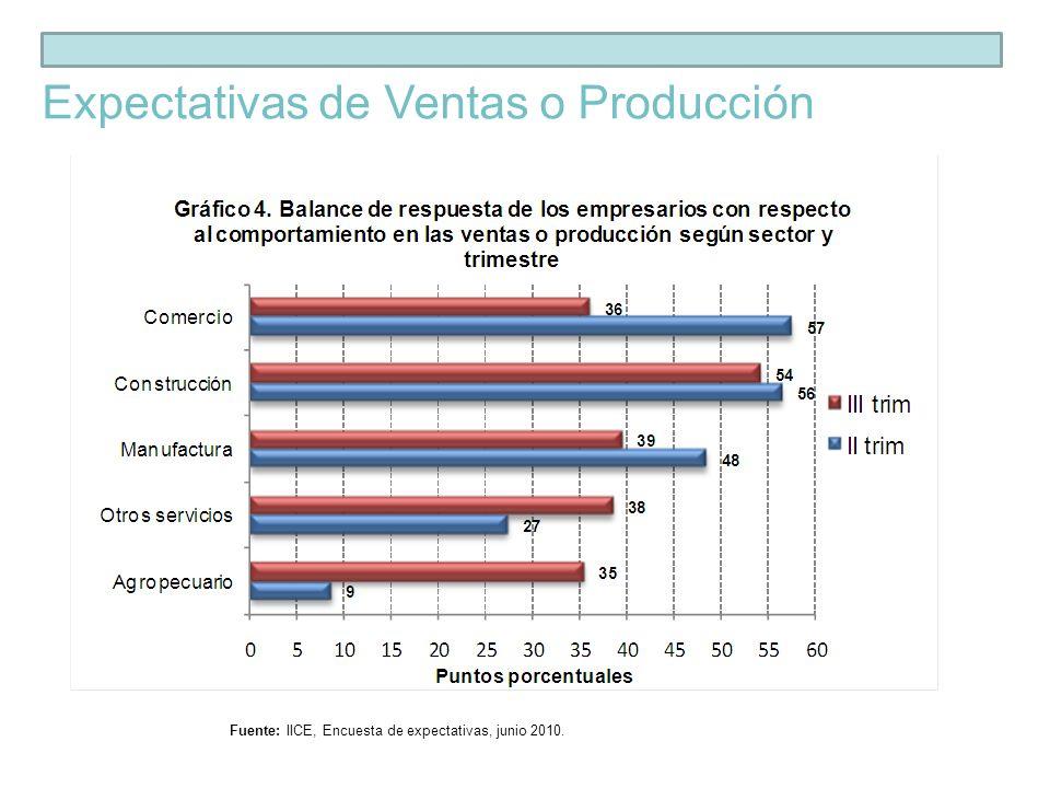 Fuente: IICE, Encuesta de expectativas, junio 2010. Expectativas de Utilidades