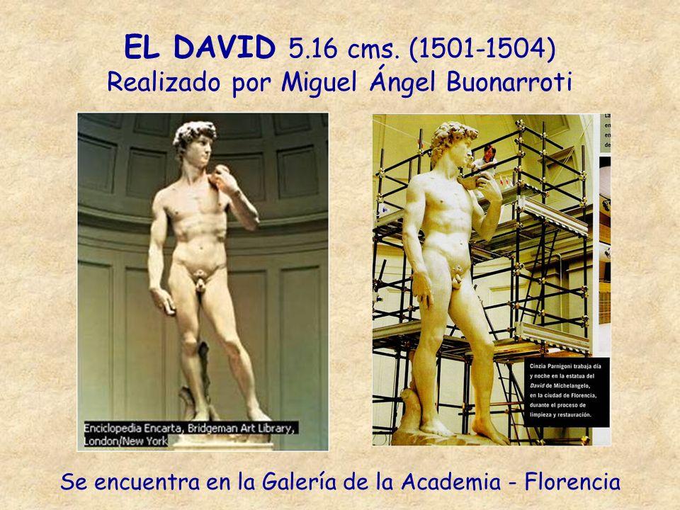 EL DAVID 5.16 cms. (1501-1504) Realizado por Miguel Ángel Buonarroti Se encuentra en la Galería de la Academia - Florencia