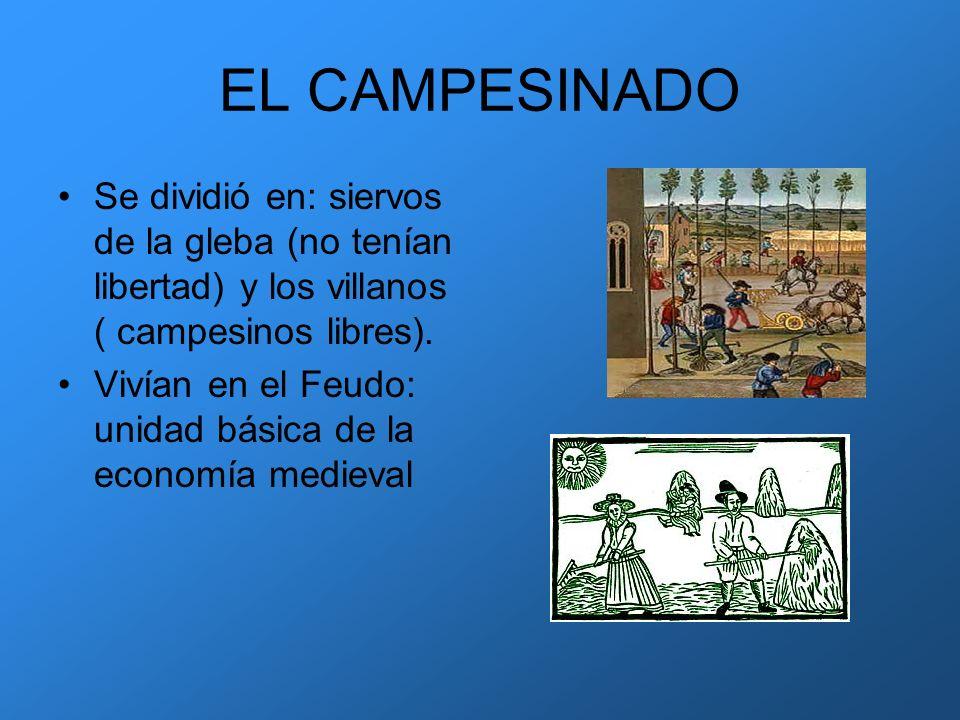 EL CAMPESINADO Se dividió en: siervos de la gleba (no tenían libertad) y los villanos ( campesinos libres). Vivían en el Feudo: unidad básica de la ec