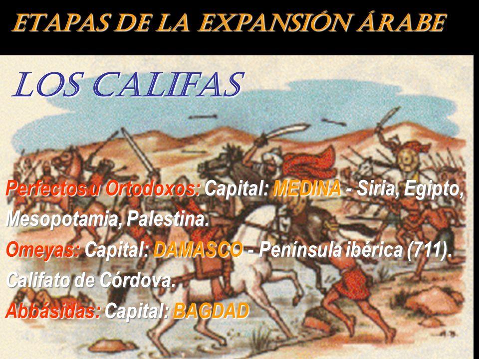 ETAPAS DE LA EXPANSIÓN ÁRABE LOS CALIFAS Perfectos u Ortodoxos: Capital: MEDINA - Siria, Egipto, Mesopotamia, Palestina. Omeyas: Capital: DAMASCO - Pe