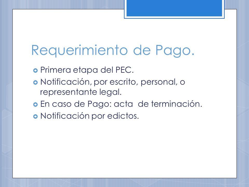 Requerimiento de Pago.Primera etapa del PEC.
