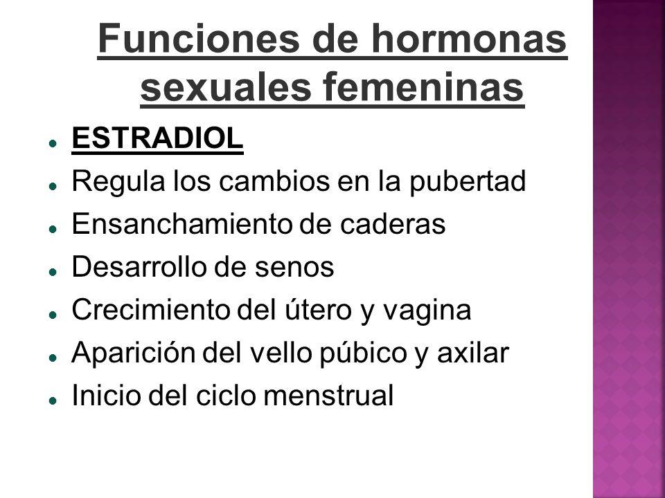 Funciones de hormonas sexuales femeninas ESTRADIOL Regula los cambios en la pubertad Ensanchamiento de caderas Desarrollo de senos Crecimiento del úte