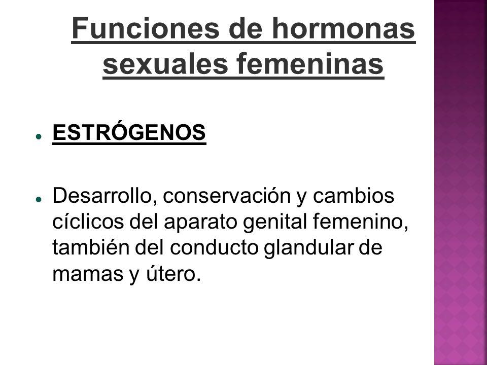 Funciones de hormonas sexuales femeninas ESTRÓGENOS Desarrollo, conservación y cambios cíclicos del aparato genital femenino, también del conducto gla