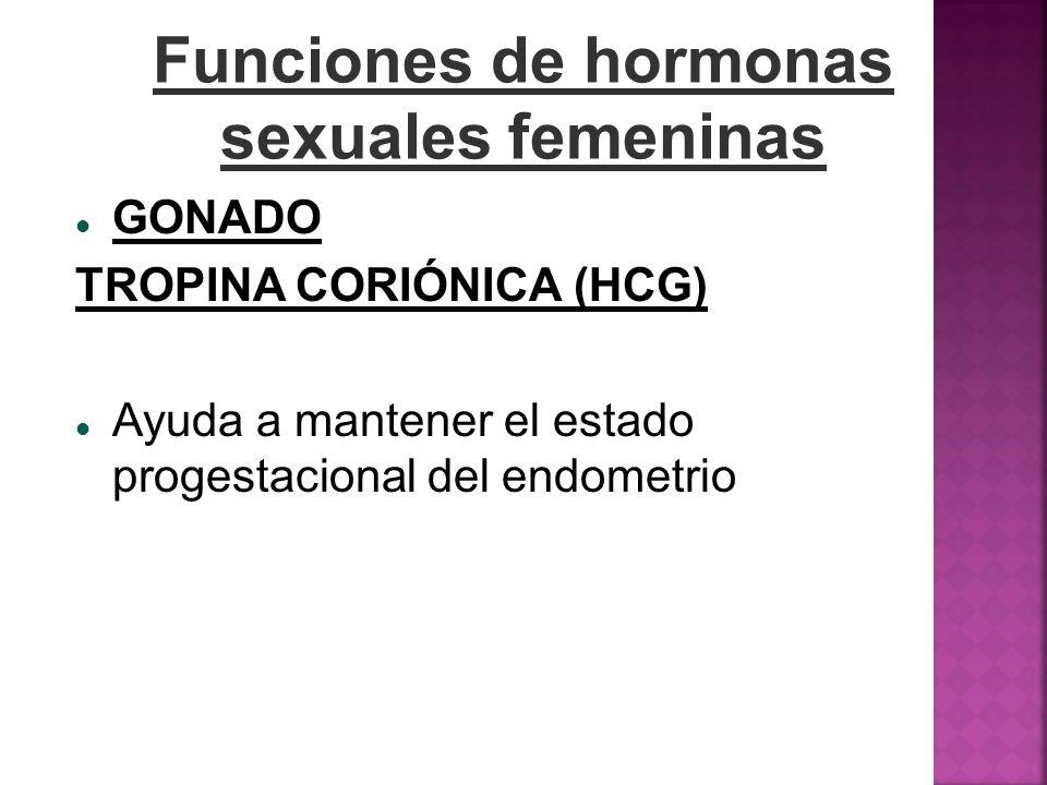 Funciones de hormonas sexuales femeninas GONADO TROPINA CORIÓNICA (HCG) Ayuda a mantener el estado progestacional del endometrio