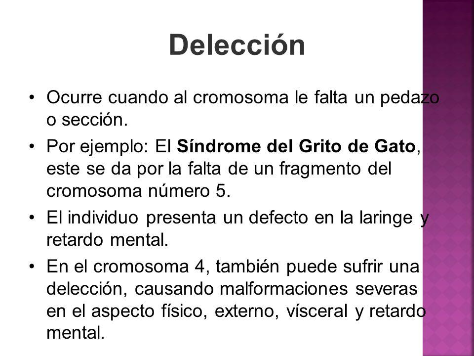 Delección Ocurre cuando al cromosoma le falta un pedazo o sección. Por ejemplo: El Síndrome del Grito de Gato, este se da por la falta de un fragmento