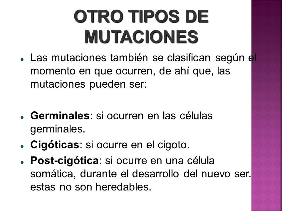OTRO TIPOS DE MUTACIONES Las mutaciones también se clasifican según el momento en que ocurren, de ahí que, las mutaciones pueden ser: Germinales: si o