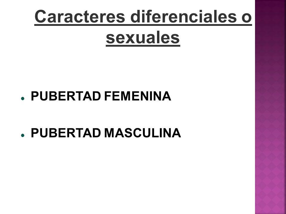 Caracteres diferenciales o sexuales PUBERTAD FEMENINA PUBERTAD MASCULINA