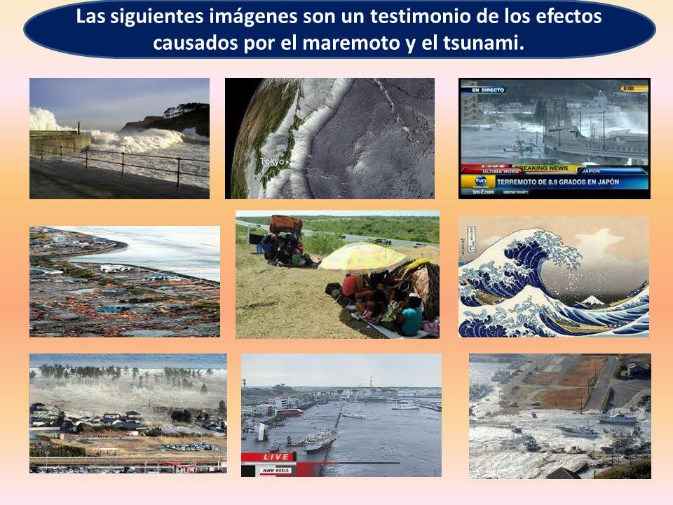 Las siguientes imágenes son un testimonio de los efectos causados por el maremoto y el tsunami.