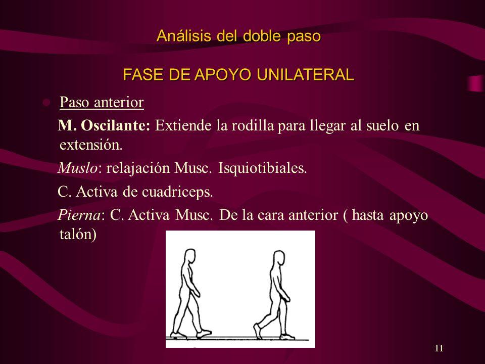 11 Análisis del doble paso FASE DE APOYO UNILATERAL Paso anterior M. Oscilante: Extiende la rodilla para llegar al suelo en extensión. Muslo: relajaci