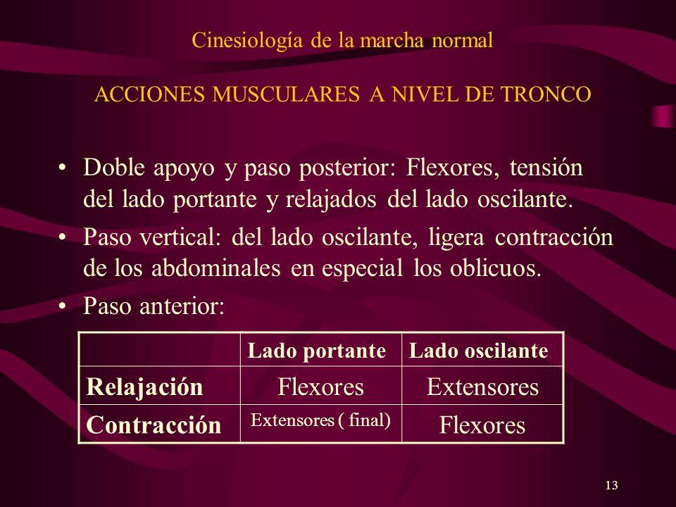 13 Cinesiología de la marcha normal ACCIONES MUSCULARES A NIVEL DE TRONCO Doble apoyo y paso posterior: Flexores, tensión del lado portante y relajado