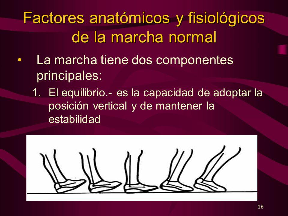 16 Factores anatómicos y fisiológicos de la marcha normal La marcha tiene dos componentes principales: 1.El equilibrio.- es la capacidad de adoptar la