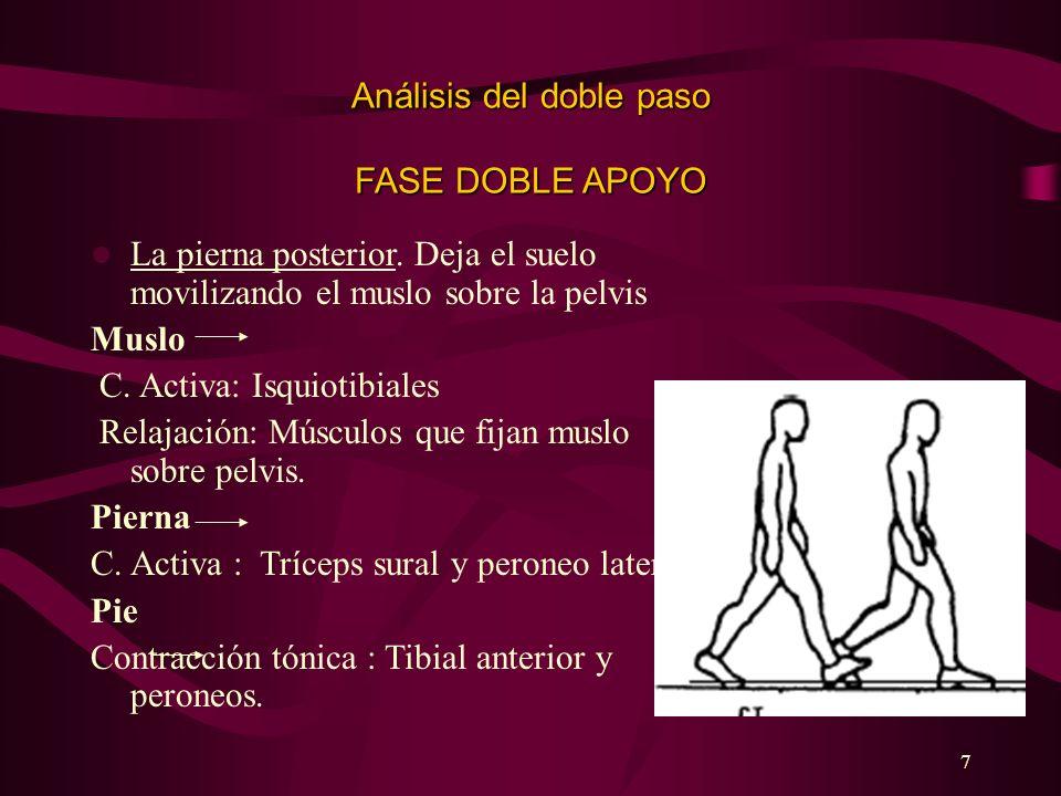 7 Análisis del doble paso FASE DOBLE APOYO La pierna posterior. Deja el suelo movilizando el muslo sobre la pelvis Muslo C. Activa: Isquiotibiales Rel