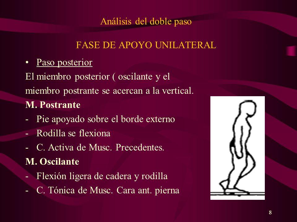 8 Análisis del doble paso FASE DE APOYO UNILATERAL Paso posterior El miembro posterior ( oscilante y el miembro postrante se acercan a la vertical. M.