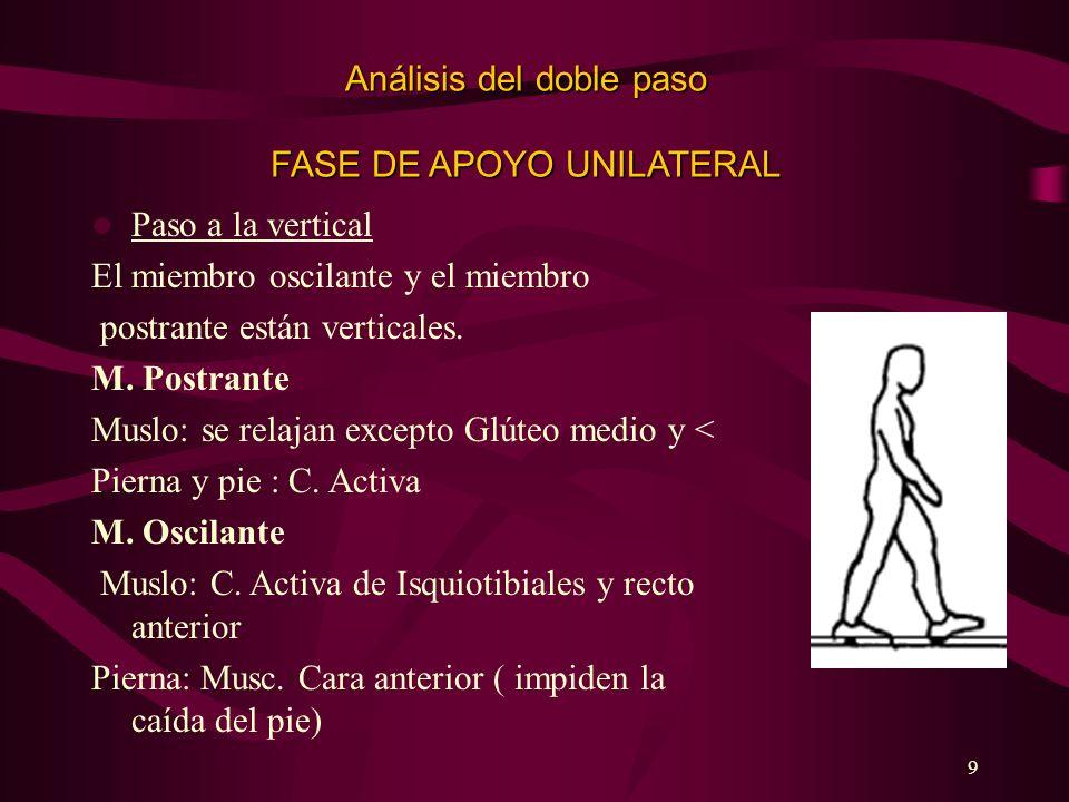 9 Análisis del doble paso FASE DE APOYO UNILATERAL Paso a la vertical El miembro oscilante y el miembro postrante están verticales. M. Postrante Muslo