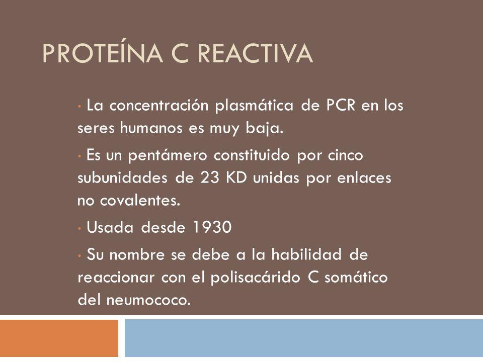 PROTEÍNA C REACTIVA La concentración plasmática de PCR en los seres humanos es muy baja. Es un pentámero constituido por cinco subunidades de 23 KD un