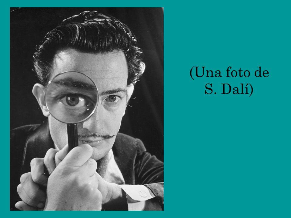 (Una foto de S. Dalí)