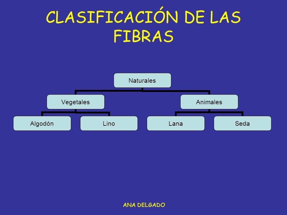 ANA DELGADO CLASIFICACIÓN DE LAS FIBRAS Naturales Vegetales AlgodónLino Animales LanaSeda