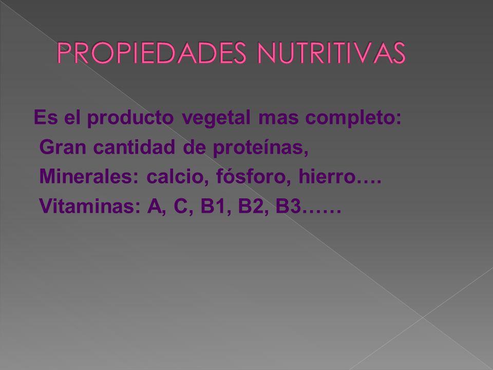 Es el producto vegetal mas completo: Gran cantidad de proteínas, Minerales: calcio, fósforo, hierro…. Vitaminas: A, C, B1, B2, B3……