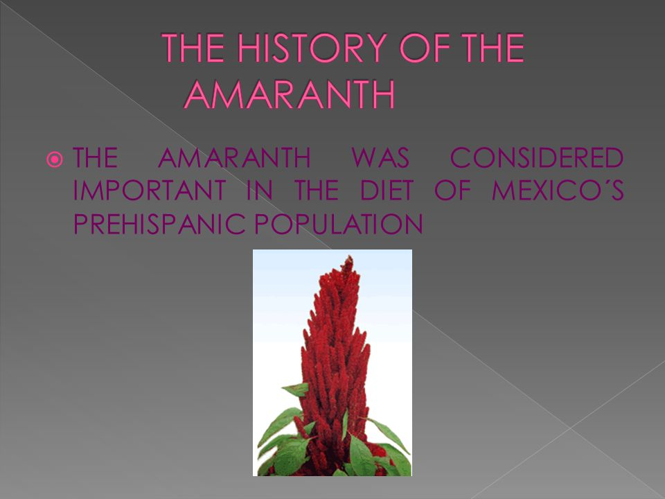 THE AMARANTH WAS CONSIDERED IMPORTANT IN THE DIET OF MEXICO´S PREHISPANIC POPULATION