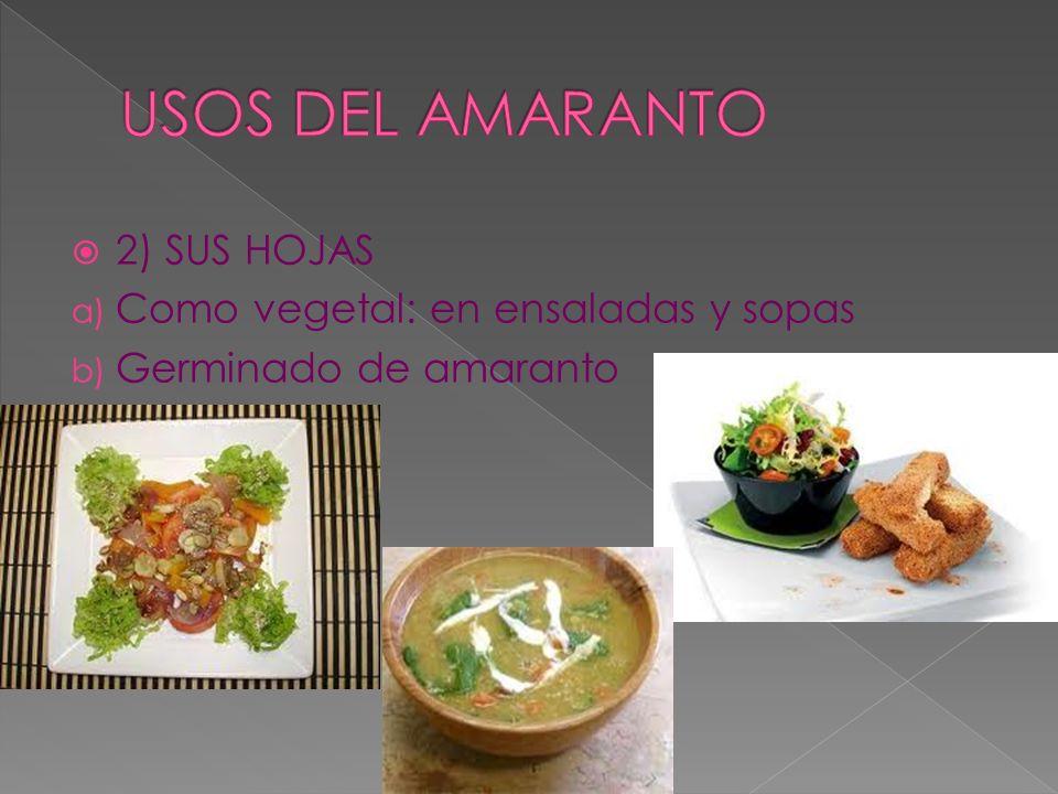 2) SUS HOJAS a) Como vegetal: en ensaladas y sopas b) Germinado de amaranto