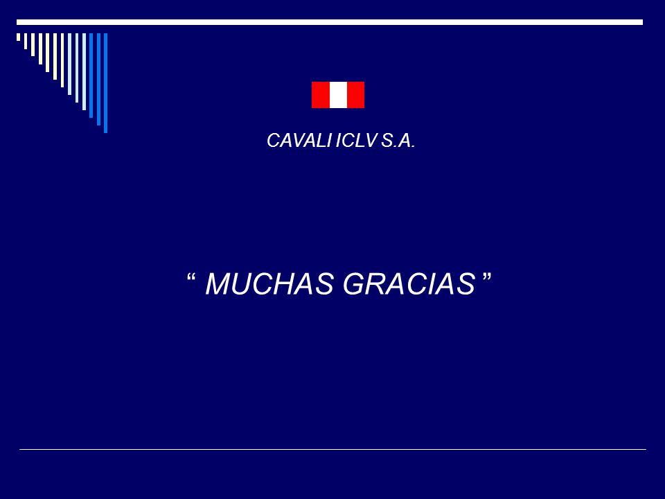 MUCHAS GRACIAS CAVALI ICLV S.A.