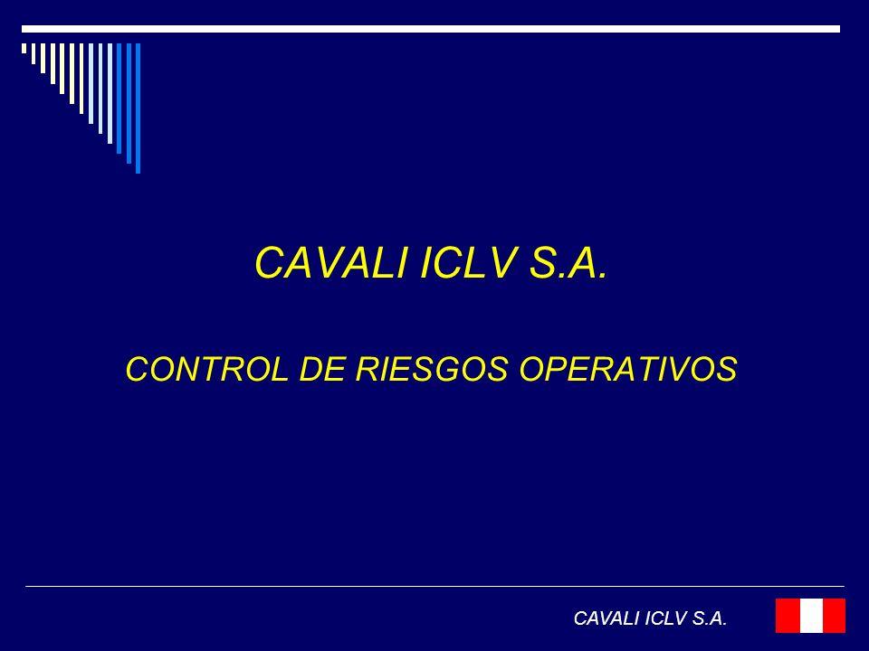 CONTROL DE RIESGOS OPERATIVOS CAVALI ICLV S.A.