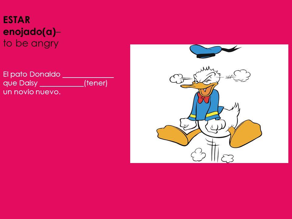 ESTAR enojado(a) – to be angry El pato Donaldo ______________ que Daisy ____________(tener) un novio nuevo.