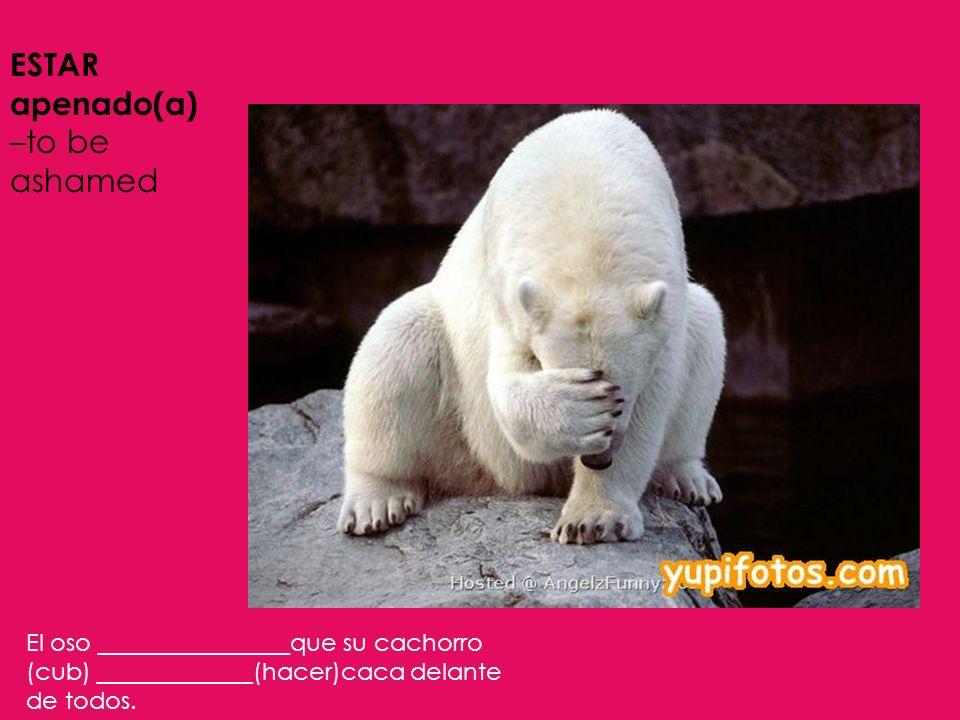 ESTAR apenado(a) –to be ashamed El oso ________________que su cachorro (cub) _____________(hacer)caca delante de todos.