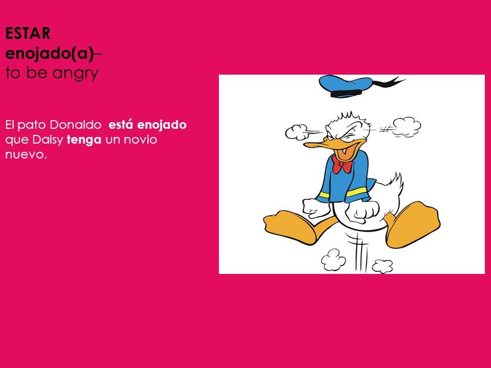 ESTAR enojado(a) – to be angry El pato Donaldo está enojado que Daisy tenga un novio nuevo.