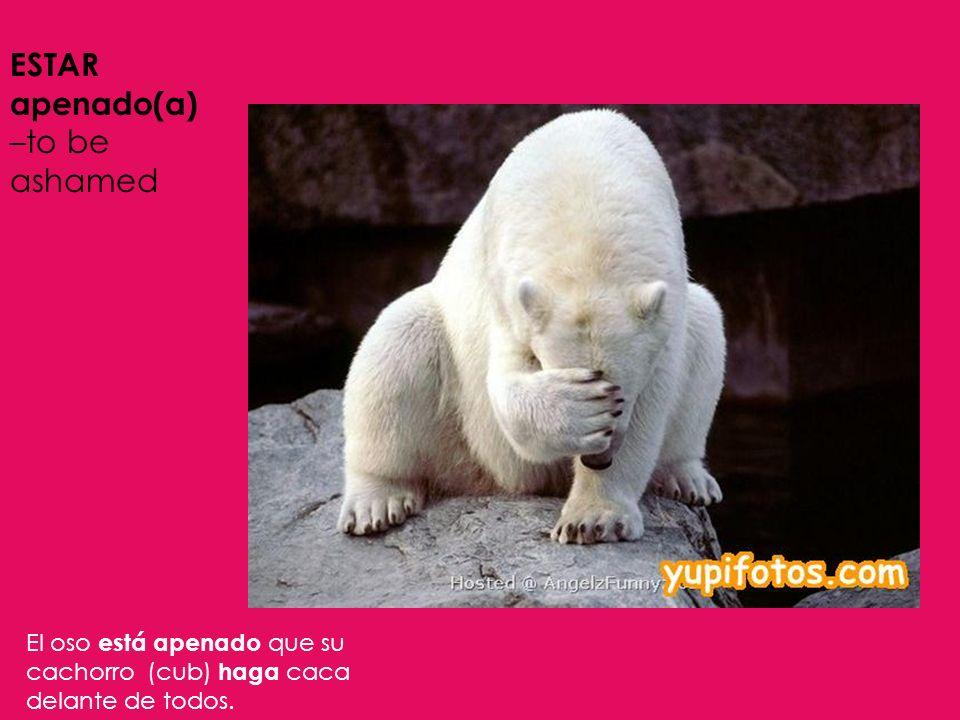 ESTAR apenado(a) –to be ashamed El oso está apenado que su cachorro (cub) haga caca delante de todos.