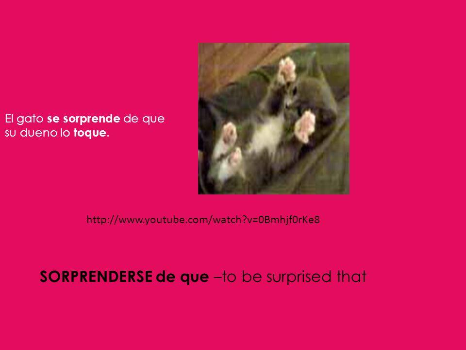 http://www.youtube.com/watch?v=0Bmhjf0rKe8 SORPRENDERSE de que –to be surprised that El gato se sorprende de que su dueno lo toque.