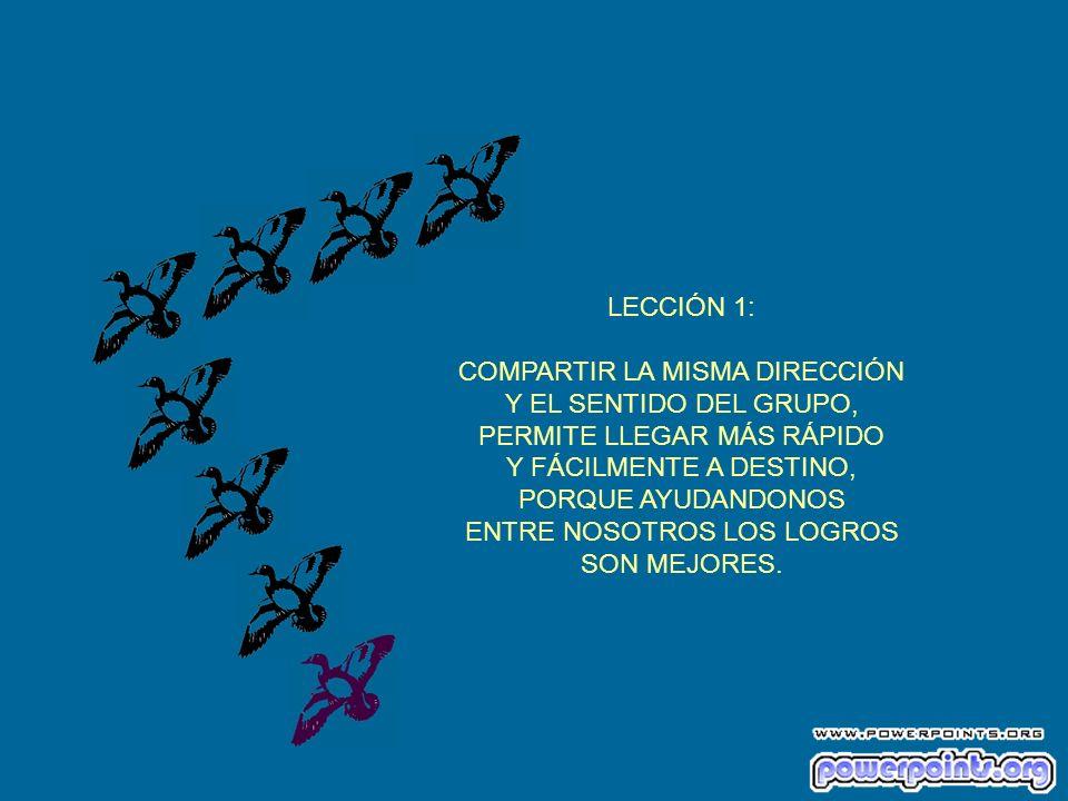 LECCIÓN 1: COMPARTIR LA MISMA DIRECCIÓN Y EL SENTIDO DEL GRUPO, PERMITE LLEGAR MÁS RÁPIDO Y FÁCILMENTE A DESTINO, PORQUE AYUDANDONOS ENTRE NOSOTROS LOS LOGROS SON MEJORES.