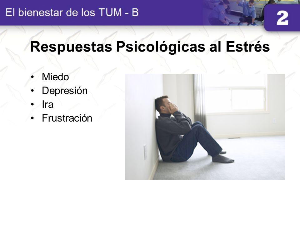 Respuestas Psicológicas al Estrés Miedo Depresión Ira Frustración