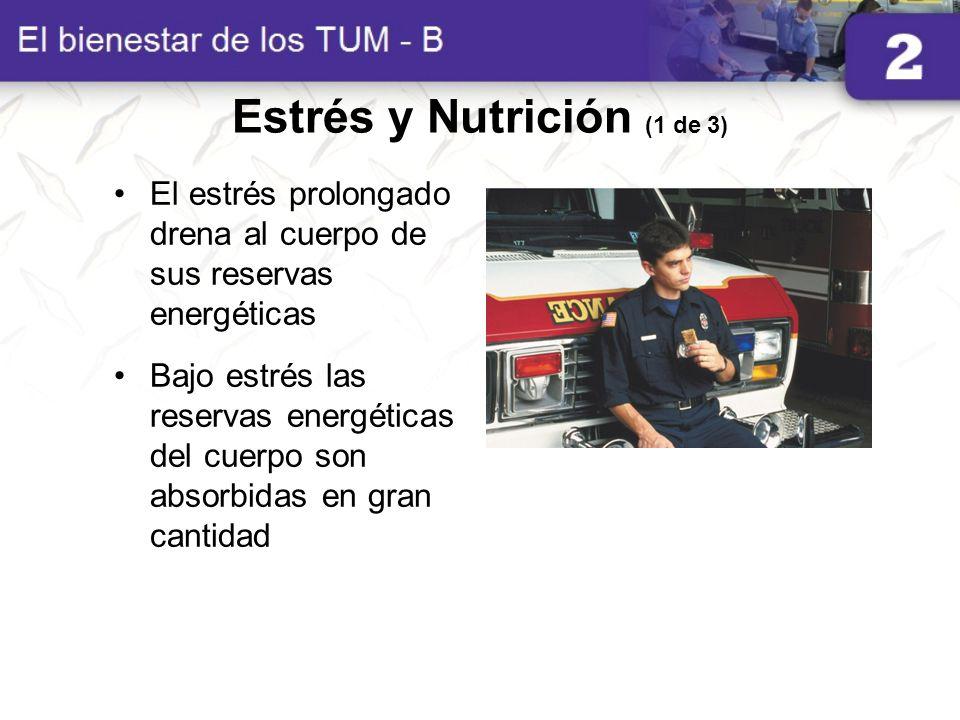 Estrés y Nutrición (1 de 3) El estrés prolongado drena al cuerpo de sus reservas energéticas Bajo estrés las reservas energéticas del cuerpo son absor