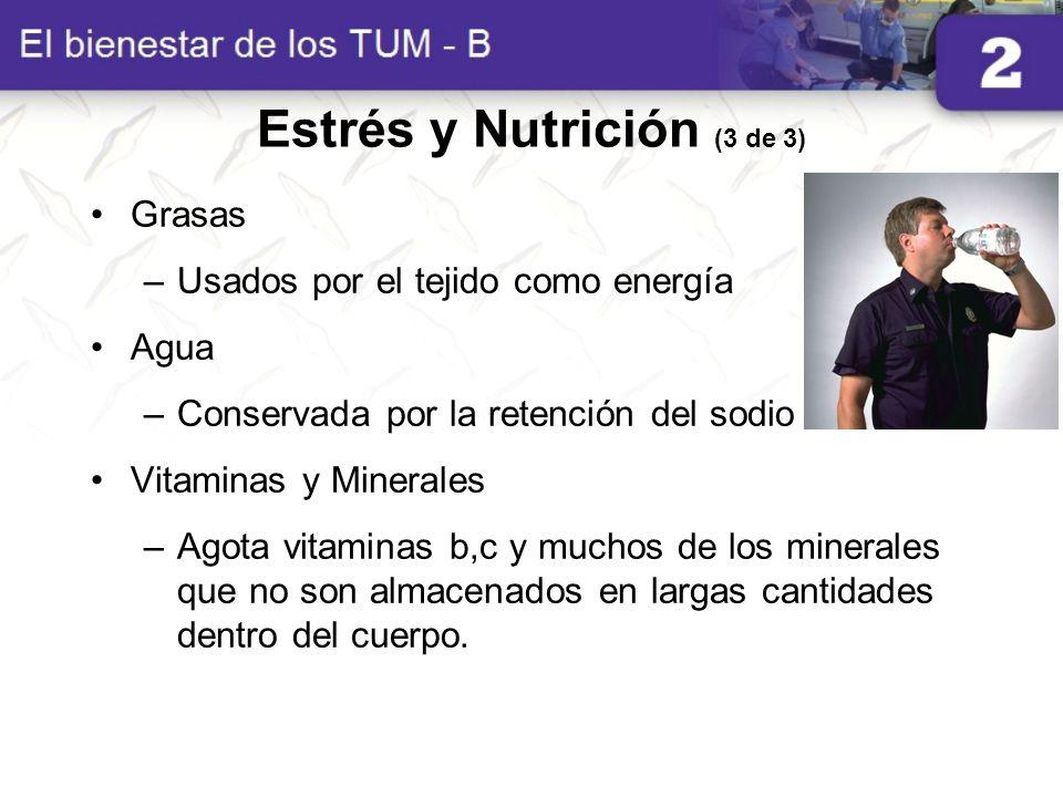 Estrés y Nutrición (3 de 3) Grasas –Usados por el tejido como energía Agua –Conservada por la retención del sodio Vitaminas y Minerales –Agota vitamin