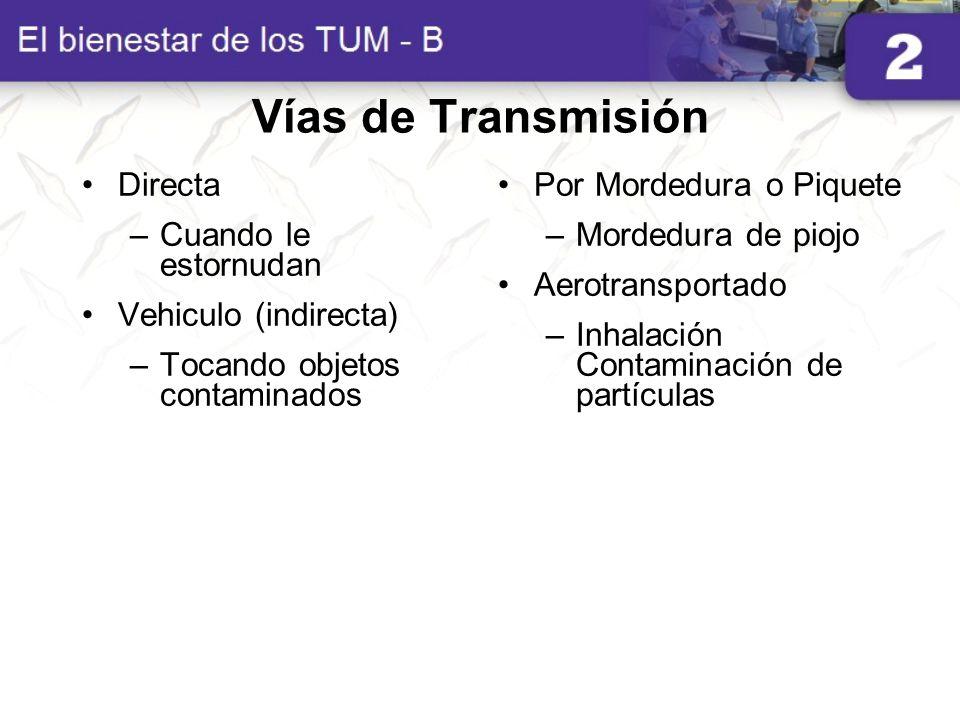 Vías de Transmisión Directa –Cuando le estornudan Vehiculo (indirecta) –Tocando objetos contaminados Por Mordedura o Piquete –Mordedura de piojo Aerot