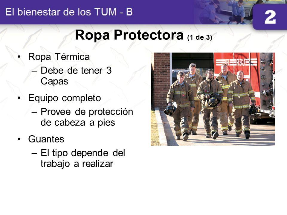 Ropa Protectora (1 de 3) Ropa Térmica –Debe de tener 3 Capas Equipo completo –Provee de protección de cabeza a pies Guantes –El tipo depende del traba