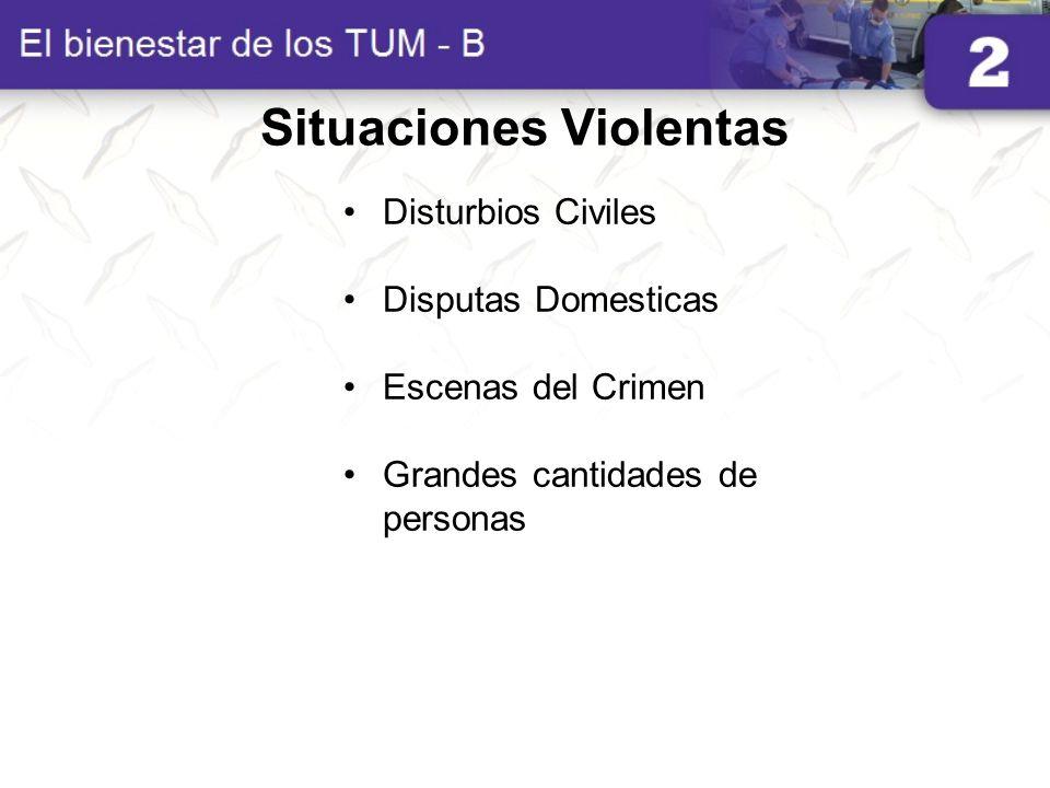 Situaciones Violentas Disturbios Civiles Disputas Domesticas Escenas del Crimen Grandes cantidades de personas