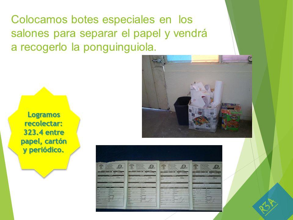 Colocamos botes especiales en los salones para separar el papel y vendrá a recogerlo la ponguinguiola. R3A