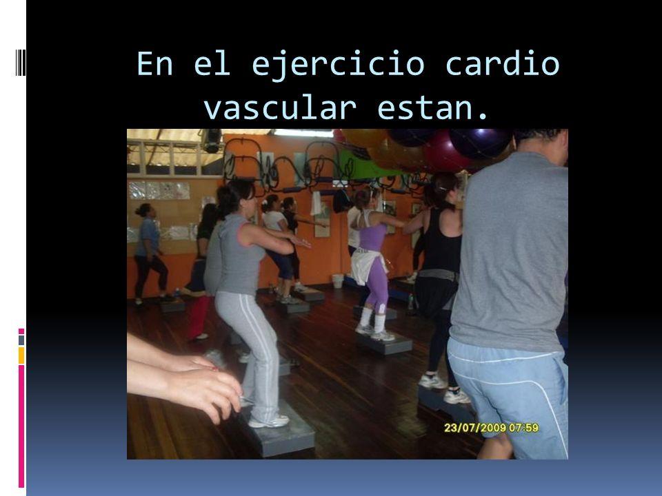 En el ejercicio cardio vascular estan.
