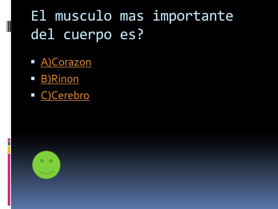 El musculo mas importante del cuerpo es? A)Corazon B)Rinon C)Cerebro