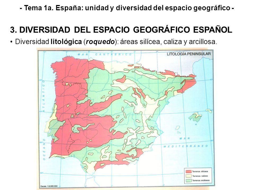 - Tema 1a. España: unidad y diversidad del espacio geográfico - 3. DIVERSIDAD DEL ESPACIO GEOGRÁFICO ESPAÑOL Diversidad litológica (roquedo): áreas si