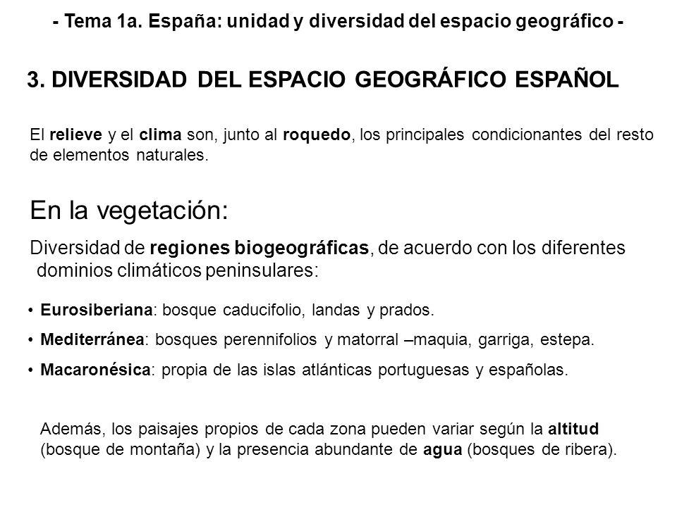 - Tema 1a. España: unidad y diversidad del espacio geográfico - Diversidad de regiones biogeográficas, de acuerdo con los diferentes dominios climátic