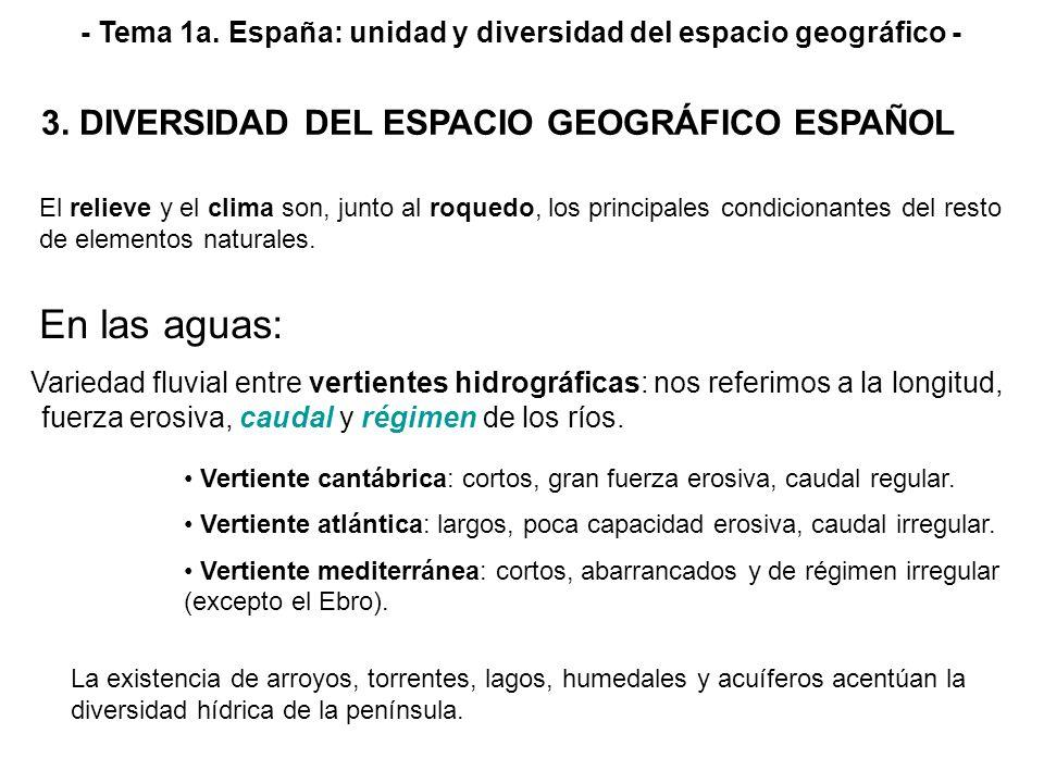 - Tema 1a. España: unidad y diversidad del espacio geográfico - Variedad fluvial entre vertientes hidrográficas: nos referimos a la longitud, fuerza e