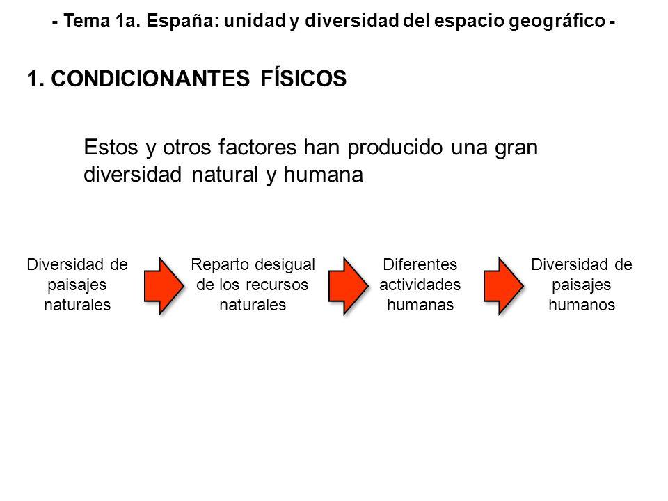 Estos y otros factores han producido una gran diversidad natural y humana Diversidad de paisajes naturales Reparto desigual de los recursos naturales