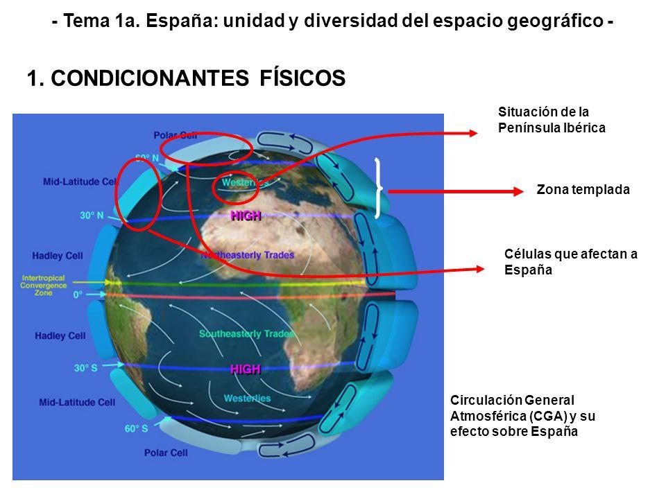 Zona templada Situación de la Península Ibérica Células que afectan a España Circulación General Atmosférica (CGA) y su efecto sobre España - Tema 1a.
