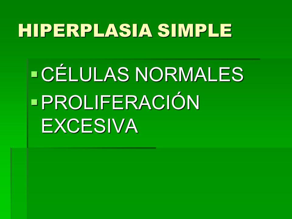 HIPERPLASIA SIMPLE CÉLULAS NORMALES CÉLULAS NORMALES PROLIFERACIÓN EXCESIVA PROLIFERACIÓN EXCESIVA